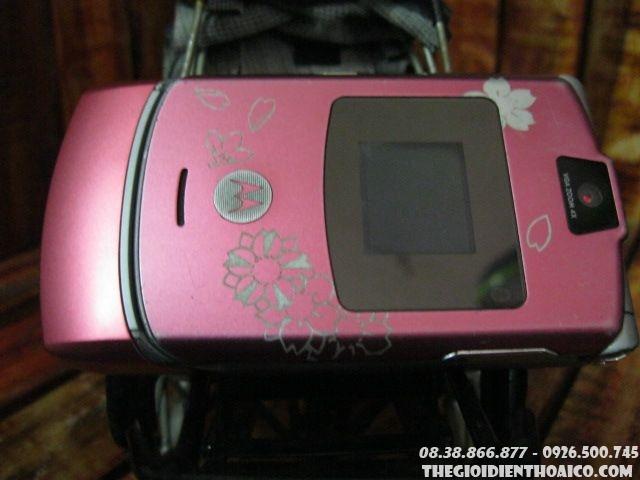Motorola-V3-hong-hoa-8091.jpg