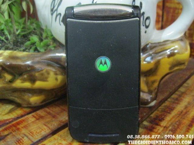 Motorola-9502.jpg