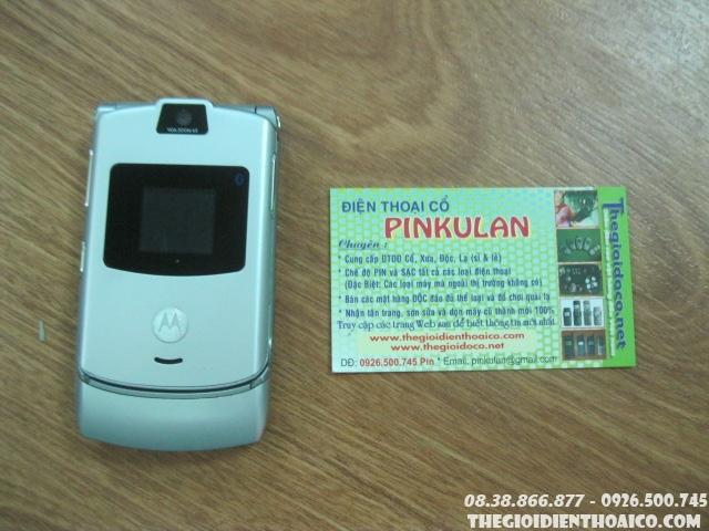 IMG6535.jpg