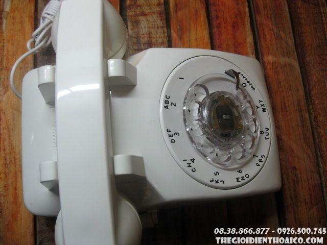 DTB-1019.jpg