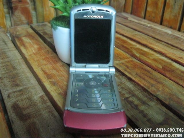 Motorola-V3-hong10.jpg
