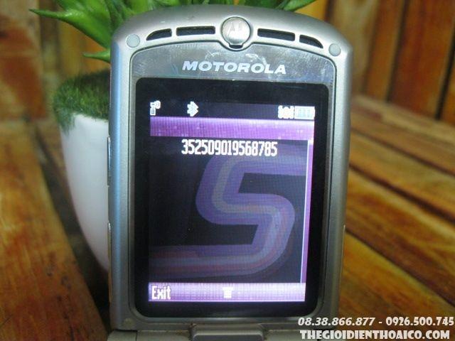 Motorola-V3-hong2.jpg