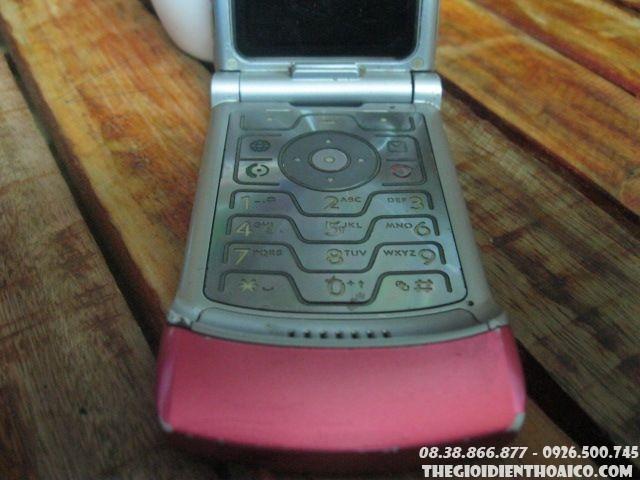 Motorola-V3-hong8.jpg