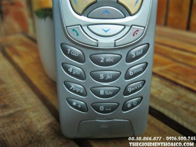 Nokia-6310-123611.jpg