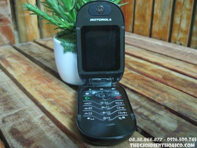 Motorola-U6-hot-vit-12635.jpg