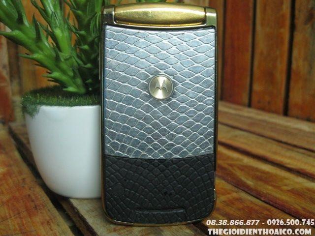 Motorola-V8-Gold-13395.jpg