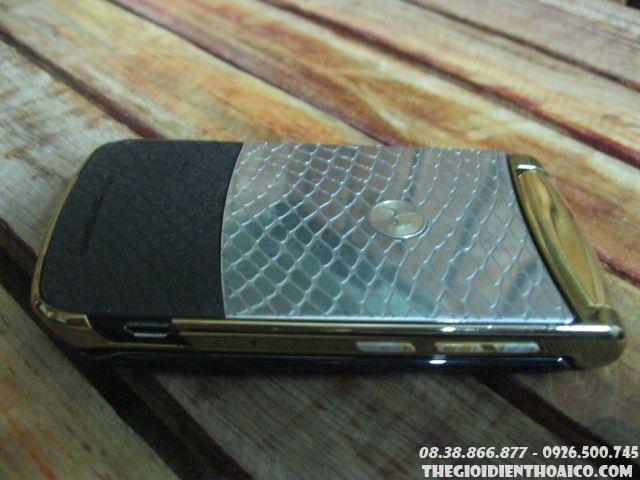 Motorola-V8-Gold-13399.jpg