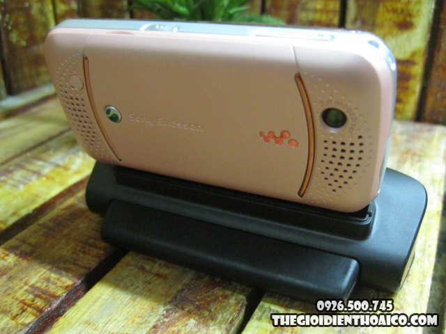 Sony-Ericsson-W395C_2.jpg