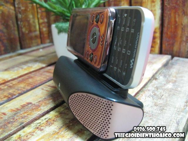 Sony-Ericsson-W395C_3.jpg