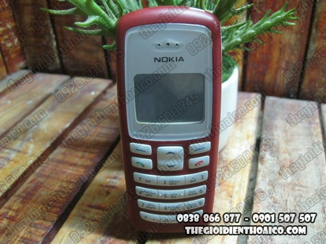 Nokia-2100_1.jpg