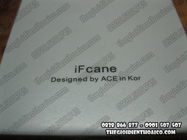 IF-Cane_9.jpg