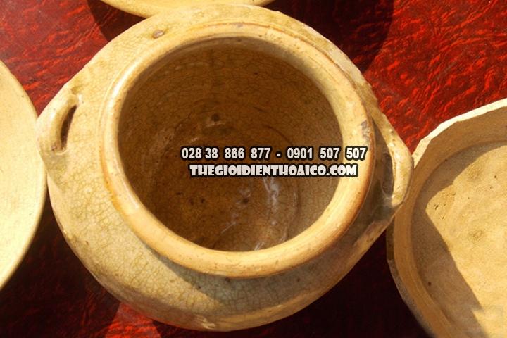 Chat-cay-de-lam-nha-vo-tinh-phat-hien-duoc-co-vat-tu-thoi-nha-Tran_4.jpg