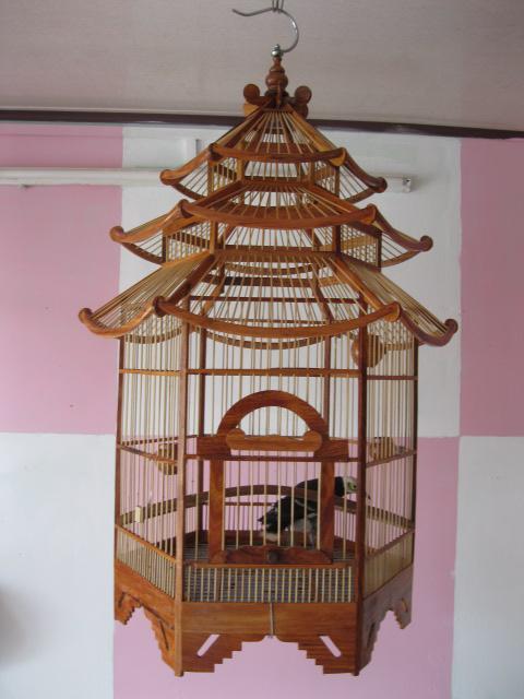 Lòng Chim 6 Cạnh Kiểu Pháp, Sang Trọng, Phong Cách, Mã số 03