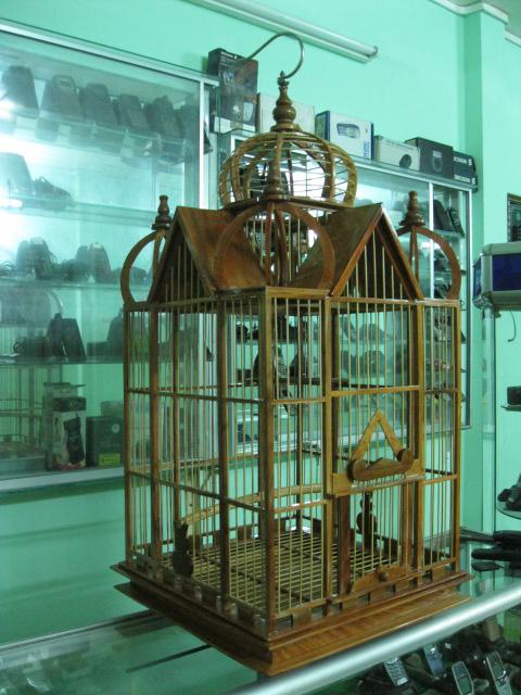 Lòng Chim Pari. Kiểu Dáng Hiện Đại, Phong Cách Của Chim , Mã sô 15