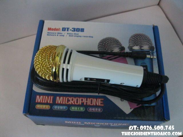 Mini Microphone DT 308 xách tay
