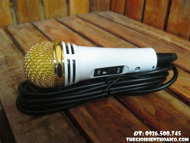 Mini Microphone DT 308 chính hãng