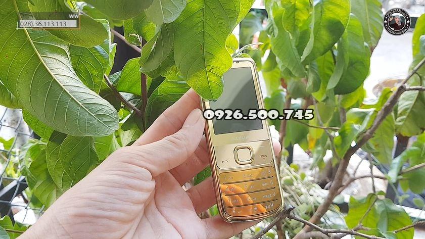 Nokia-6700-Gold-Silver-Pinkulan_4.jpg