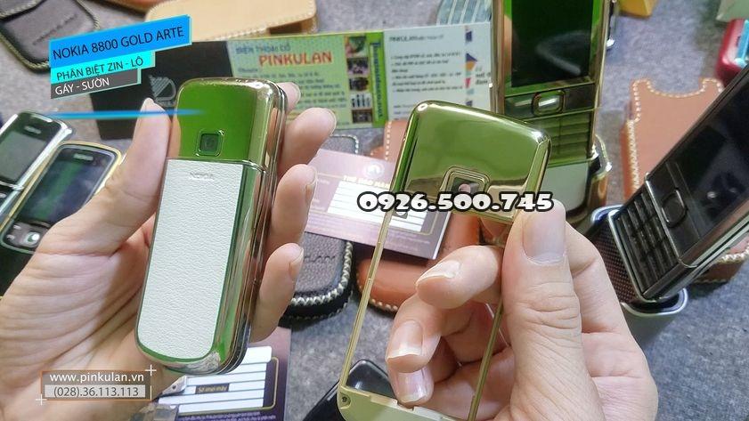 Phan-biet-gay-suon-zin-va-lo-Nokia-8800-Arte-Gold_2.jpg